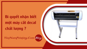 faq-cach-nhan-biet-may-cat-decal-tot