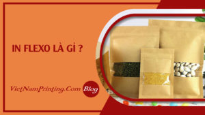 faq-in-flexo-la-gi