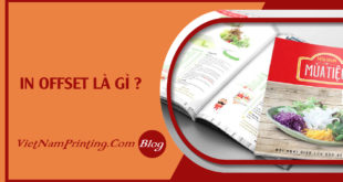 faq-in-offset-la-gi?